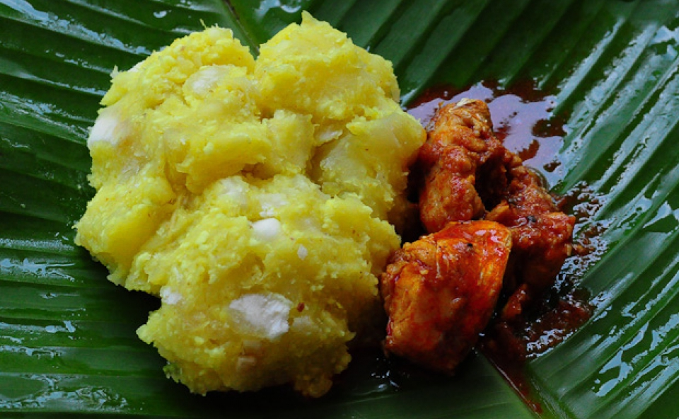 Kappa and Fish Curry
