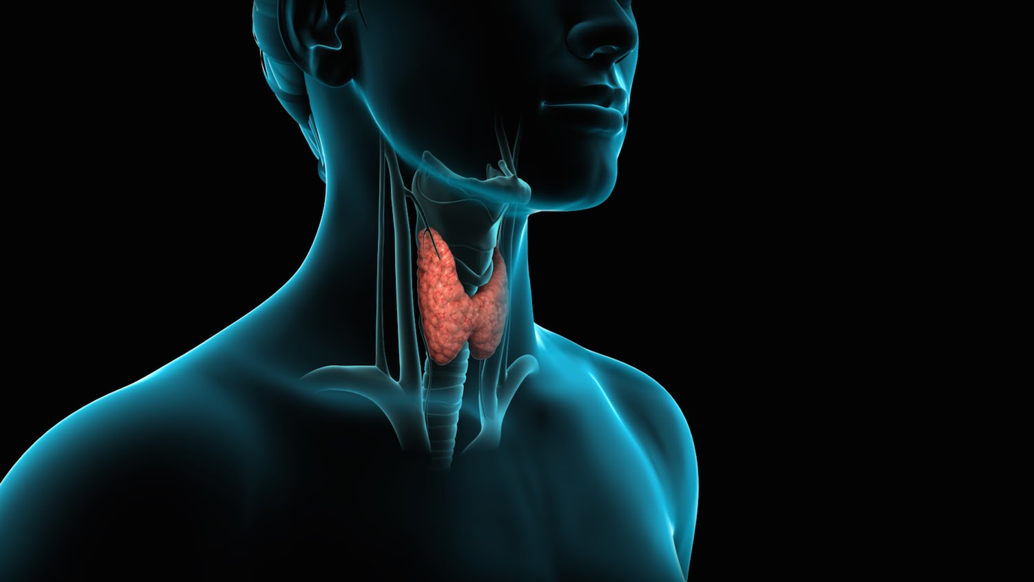 Foods to Eat and Avoid to Manage Common Thyroid Disorder Symptoms