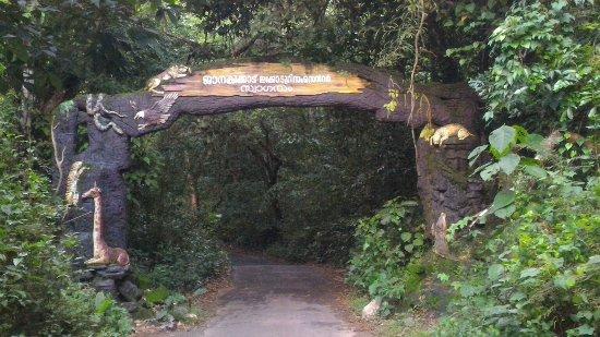 Janaki Forest Maronthongara Panchayat Kozhikode