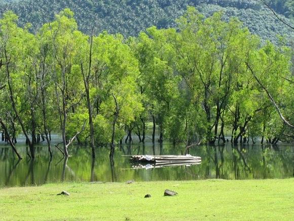 Kakkayam Dam Kakkayam Kozhikode