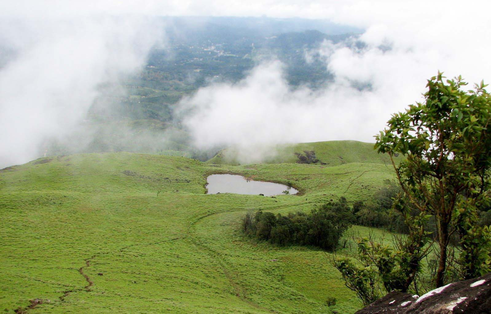 Chembra peak Near to Meppady Wayanad