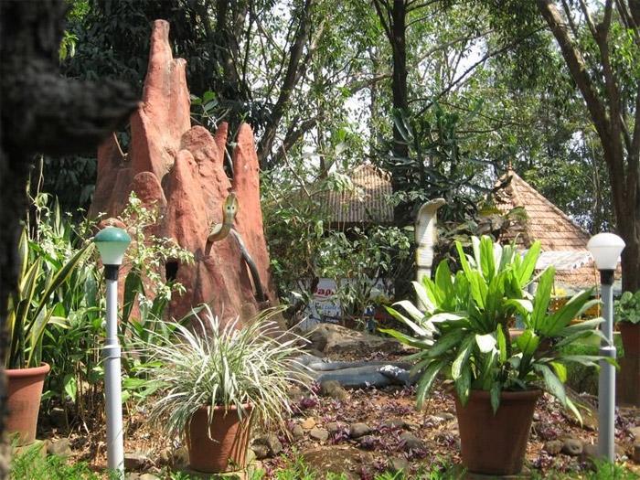 Parassinikkadavu Snake Park Parassinkkadavu Kannur