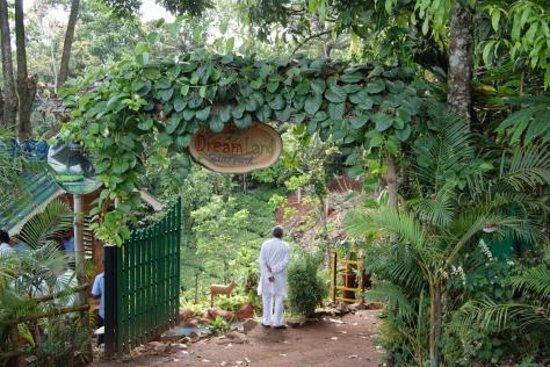 Dreamland Spices Park 14 kms away from Munnar town Idukki