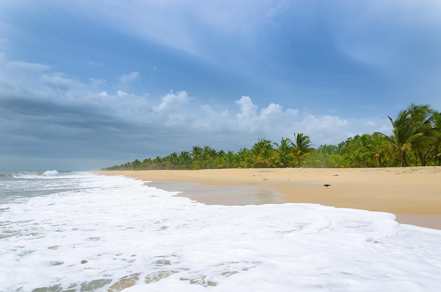 Marari beach Mararikulum Alappuzha