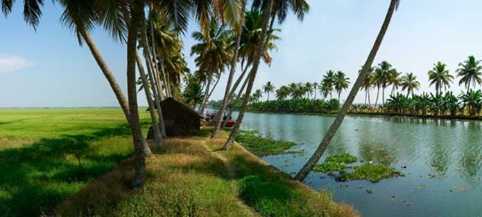 Arpookara Grama Panchayath Image