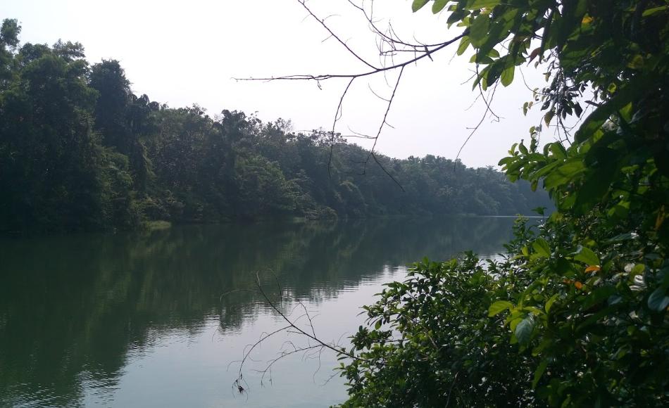 Kunnathoor Grama Panchayath Image