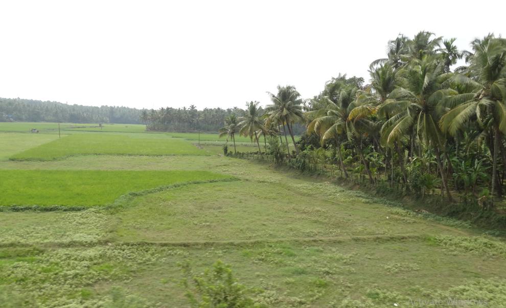 Vallachira Grama Panchayath Vallachira Thrissur